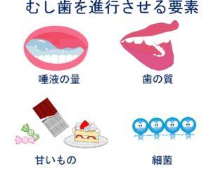 むし歯を進行させる要素